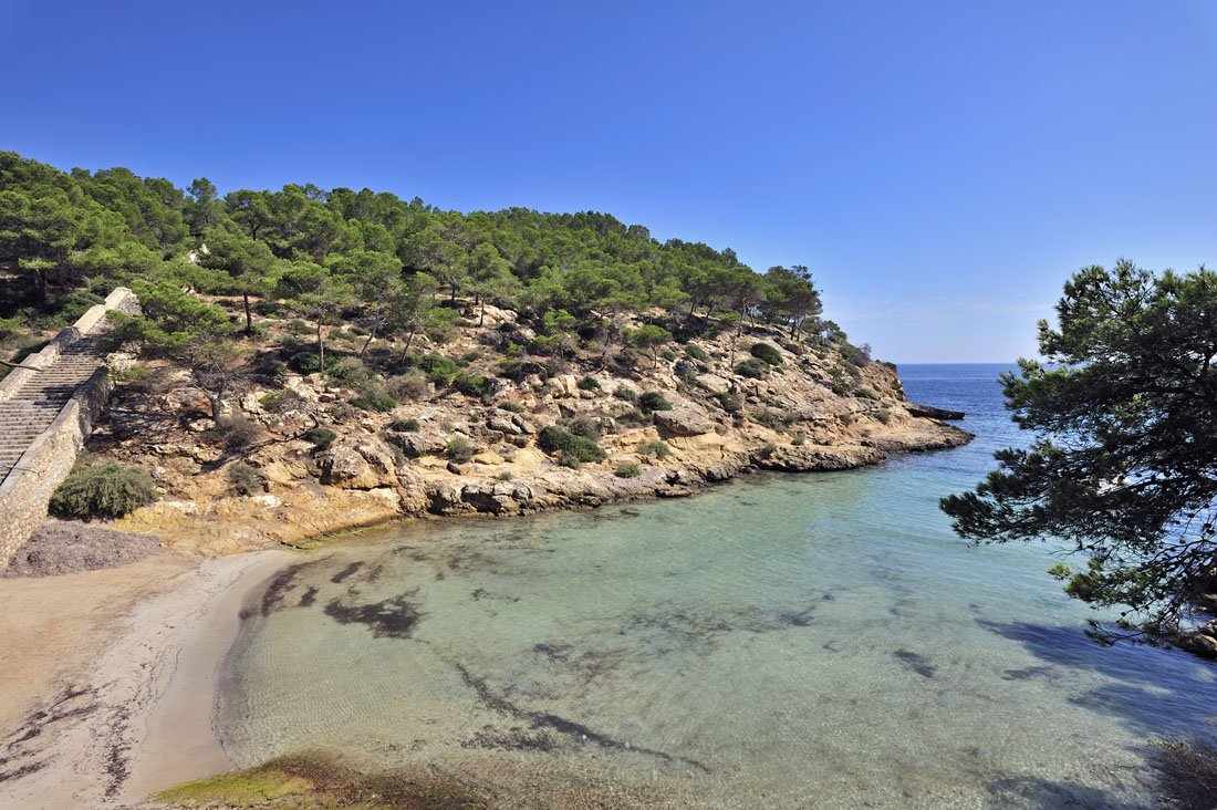Surroundings: Magaluf